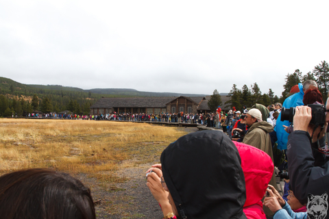 Old Faithful Crowd 2