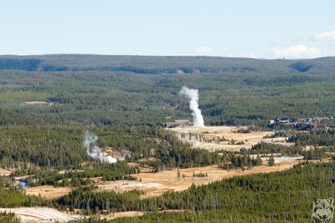 Old Faithful from Biscuit Basin Overlook