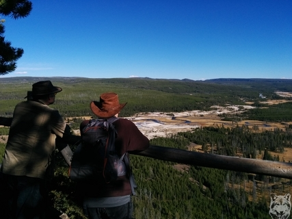 Viewing down on Upper Geyser Basin